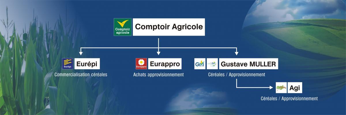 Organigramme des sociétés du Groupe Comptoir Agricole
