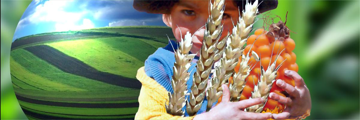 Être un acteur majeur et responsable de l'Agriculture du 21e siècle