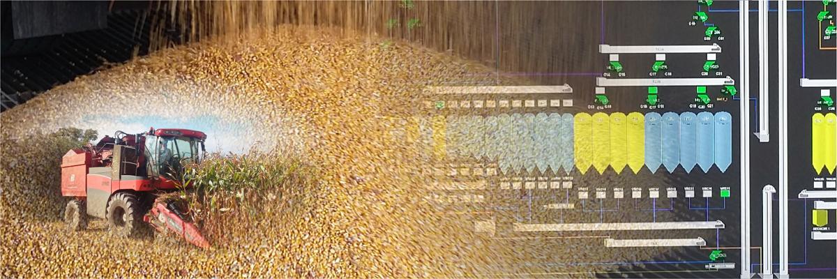 Moissonneuse batteuses en train de faucher du maïs - Ecran de supervision d'un silo